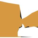 dincel-beyaz-logo